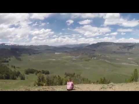 Grand Teton and Yellowstone National Park Vacation
