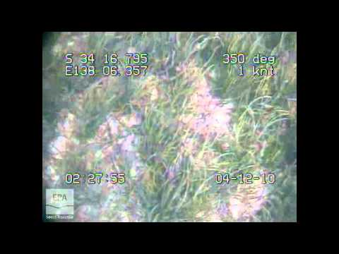 m0003 EPA Marine Aquatic Ecosystem Condition Report Gulf St Vincent 2010 - Proof Range