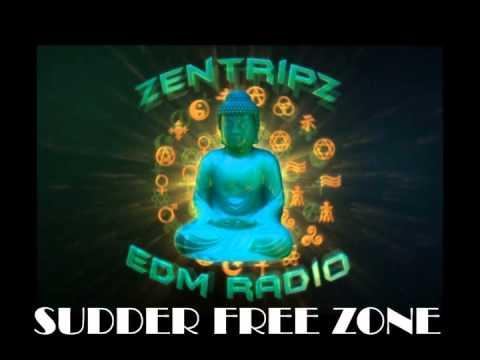 ZentripZ EDM Radio BEST of Brandon Battaglia & DJ Apple feat. DJ TRUK