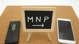 ブックメーカー投資  MNPで3月は100万目指します!!! 原田麻衣 動画 5
