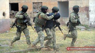 Georgian Army 2019 | Military Power