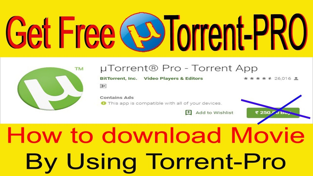 torrent for android apk free download