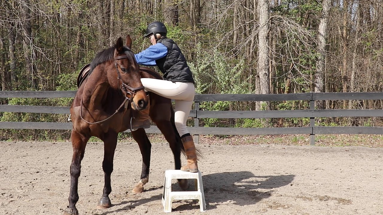 Get your horse to STAND at the Mounting Block