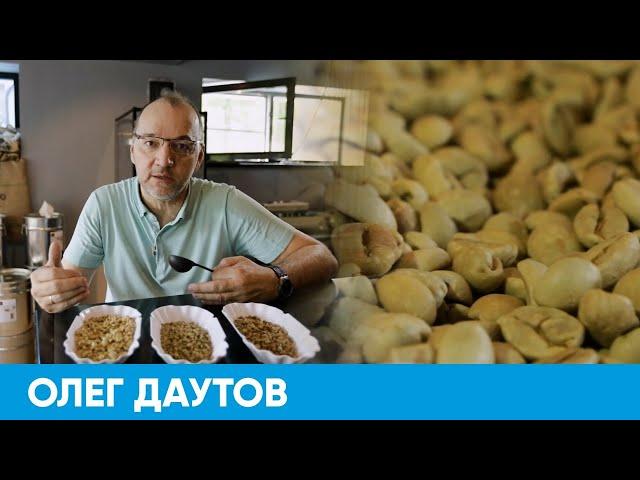 Короче, Омск | #125 – Робуста VS арабика