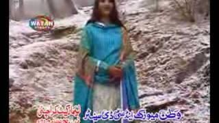 Punjabi Hindko Song - Chitta Chitta Chola - Afshan Zebi