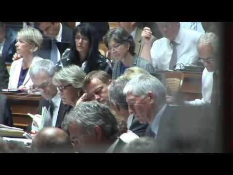 BDP Videonews zur Energie-Debatte 2011