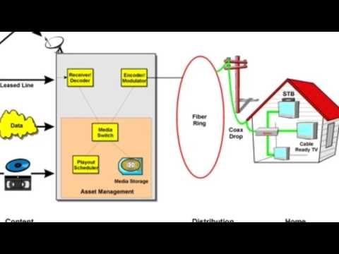 Integrated Services Digital Network (ISDN) IMS 556 - Information Management System