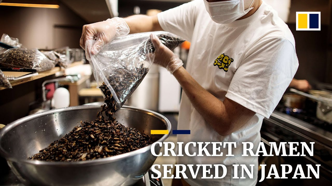 Japan insect enthusiast cooks cricket ramen to promote insect eating