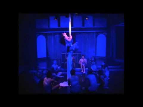 Hailley Cooper Aerial Silks