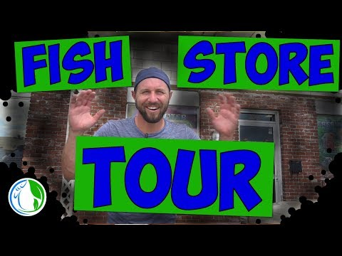 FIRST FISH STORE TOUR! - PART 1 SALTWATER