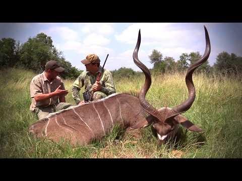 Cruiser Safaris - Time To Hunt