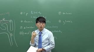 음성음운론 1강 언어음의 분포