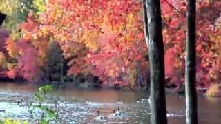 Уж небо осенью дышало...  Already the heavens were autumn breathing,