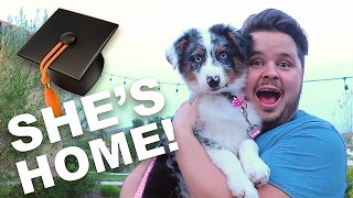 PUPPY GRADUATES TRAINING!