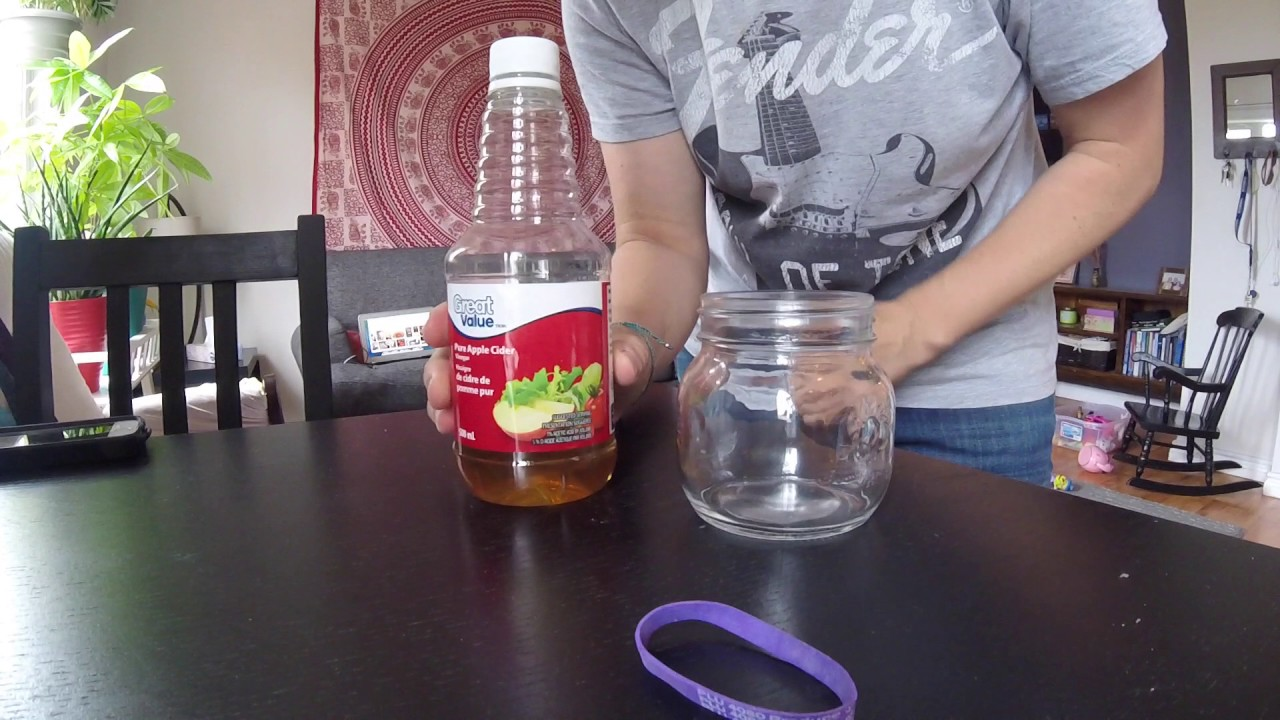 how to get rid of fruit flies quickly
