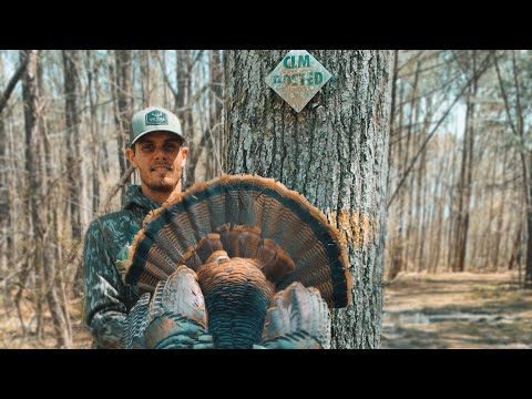South Carolina OPENING DAY 2021 TURKEY HUNT | GOBBLERS ON FIRE!!!