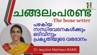 changalamparanda   ചങ്ങലംപരണ്ട  Bone setter   Dr Jaquline