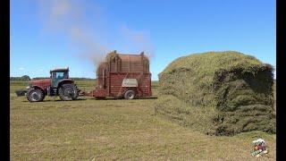 Stacking Hay in South Dakota (HESSTON STAKHAND)