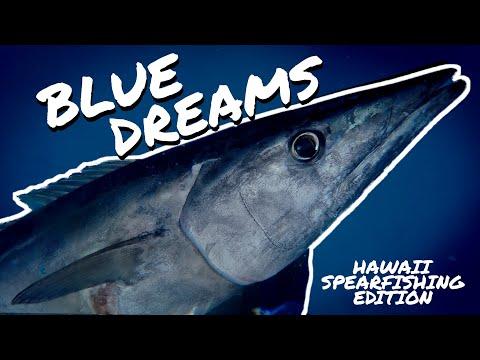 Bluewater Spearfishing Dreams - Hawaii Spearfishing