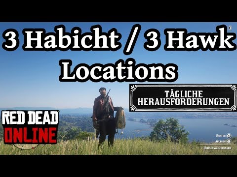 3 Habicht Hawk Locations Red Dead Redemption 2 Online Deutsch / German thumbnail