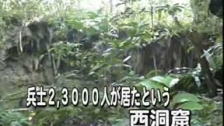 西部ニューギニア未帰還兵捜索民間外交使節団パプア巡礼の旅3 Japan Soldier