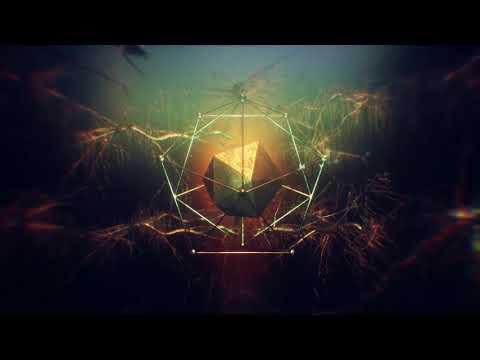 Aura Animi / / Reality (Official Lyric Video)