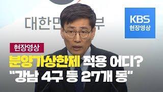 """[풀영상] 분양가상한제 적용 지역 지정 """"서울 강남 4…"""
