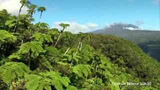 L'Ile de La Réunion : un voyage d'émotions