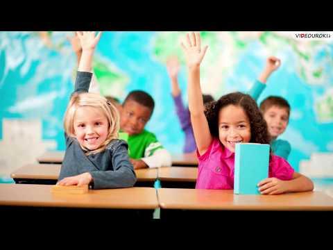 Система образования в