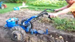 BCS 730 with 8 HP Kohler Magnum pulling a Mainline potato plow