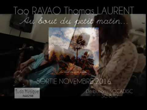 Tao RAVAO Thomas LAURENT - Count Zebra