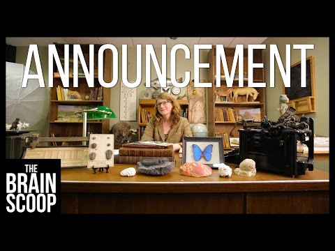 New Series Announcement! | Natural News from The Field Museum