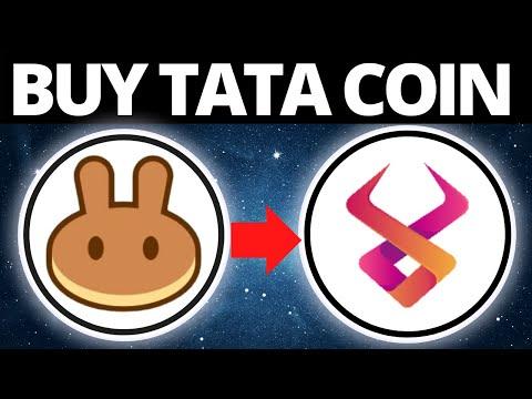 How To Buy HakunaMatata Crypto Coin On PancakeSwap (TATA TOKEN)