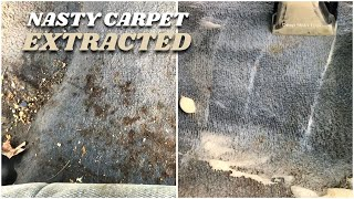 Cleaning Disgusting Car Carpets: 22 Years No Cleaning
