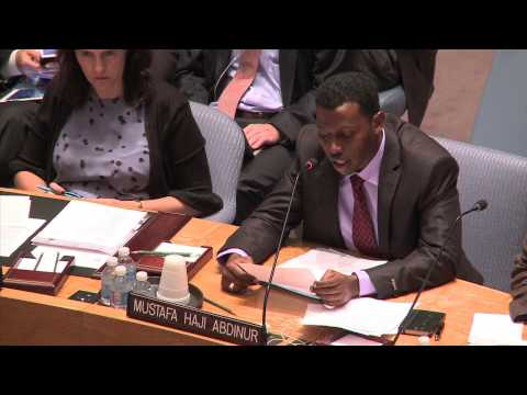 Somalia journalist Mustafa Haji Abdinur addresses the UN Security Council