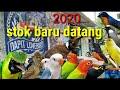 Burung Baru Datang  Ke  Lovebird Cililin Beo Cendet Murai  Mp3 - Mp4 Download