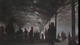 Sense of purpose By Third World Music Video