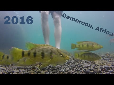 Cameroon, Africa Trip 2016