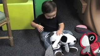 Toys for Kids with Special Needs, Autistic, Visually Impaired