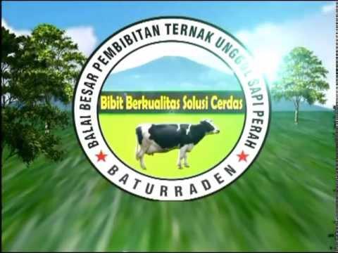 Video Profile BBPTU-HPT Baturraden 2013