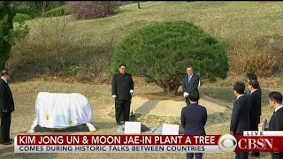 Kim Jong Un of North Korea, South Korean President Moon Jae-in plant tree
