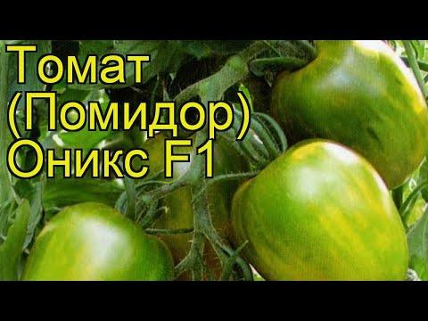 Томат обыкновенный Оникс. Краткий обзор, описание характеристик, где купить семена