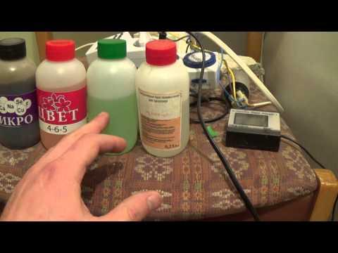 видео: Выращивание салата. Гидропоника.
