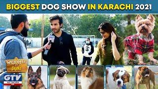 Biggest Dog Show in Karachi | Wild Pets | Season 2 | 24 January 2021