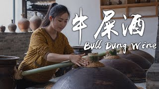 Bull Dung Wine - A Special Way to Store Wine by Dai People