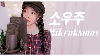 Gambar cover BTS (방탄소년단) - 소우주(Mikrokosmos) 커버COVER