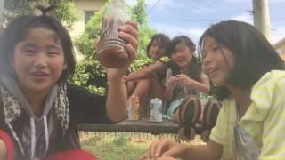 【実験】コカ・コーラとカルピスソーダとオレンジジュースを混ぜた中にグレープ味のラムネを入れたらどうなる?
