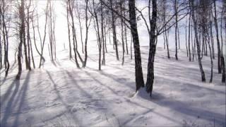 Gérard Manset - La Neige est Blanche