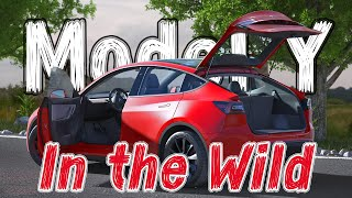 Tesla Model Y in the Wild and NEW Interior Features