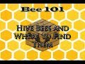FTB: Hive Bees and Where to Find Them - Bee 101 Pt.1 (Forestry, Extra Bees, Magic Bees)